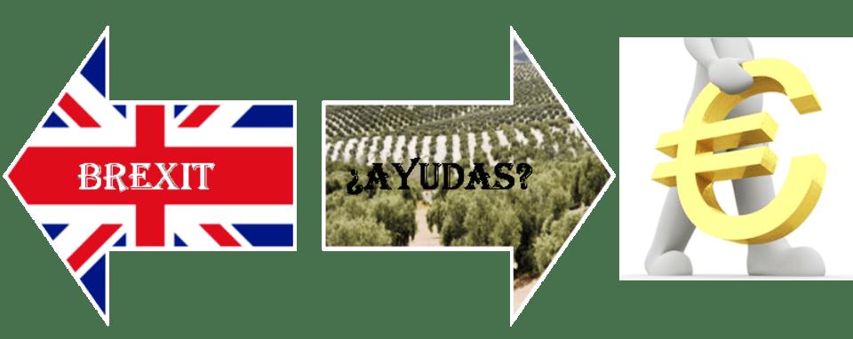 BREXIT vs AYUDAS COMUNITARIAS